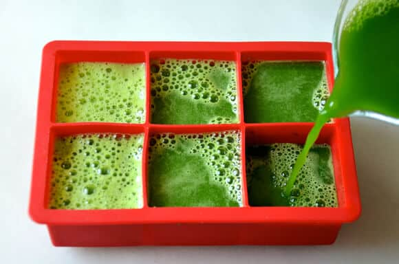 Green Juice Popsicles Recipe