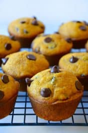 The Best Pumpkin Chocolate Chip Muffins Recipe
