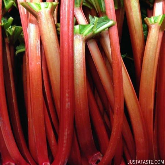Rhubarb Recipes justataste.com