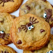 A Halloween Chocolate Chip Cookie with a chocolate spider and candy eyes.