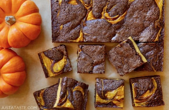 Pumpkin cheesecake brownies cut into squares alongside small pumpkins