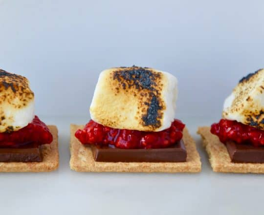 The Best Berry S'mores